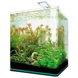 Dennerle Complete Plus LED 10l akvarijní set
