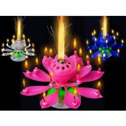 Hrajúca narodeninová sviečka Lotos