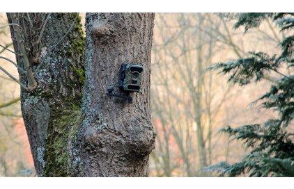 Ako na zlodejov? Pomôcť môže obyčajná fotopasca!