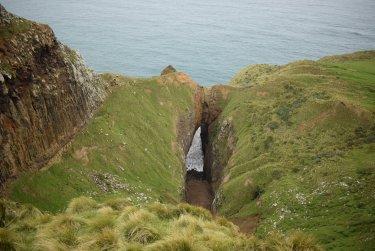 Dunedin - Otago Peninsula
