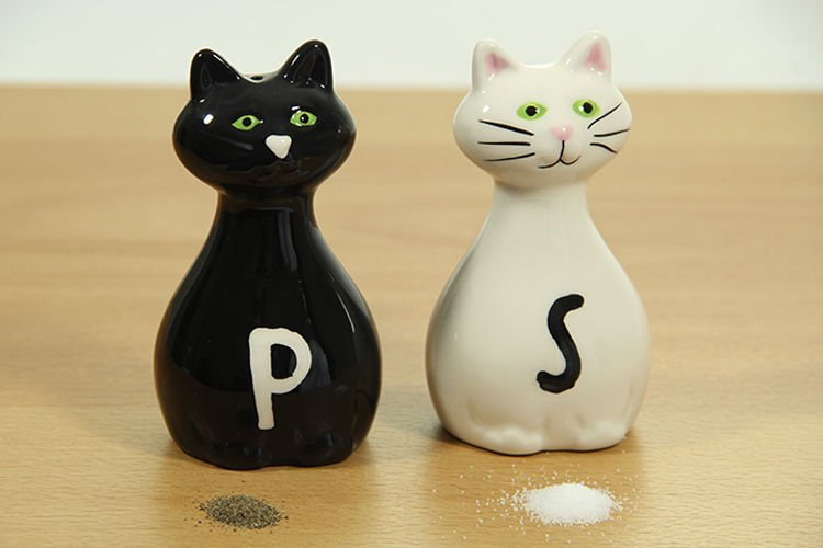 Solnička a pepřenka Kočky