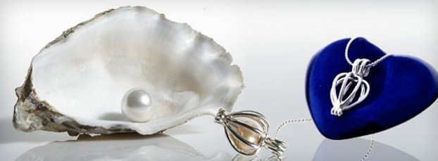Perla v ulitě