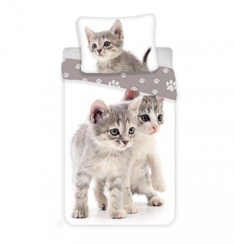 JERRY FABRICS Povlečení Kitten grey Bavlna, 140/200, 70/90 cm