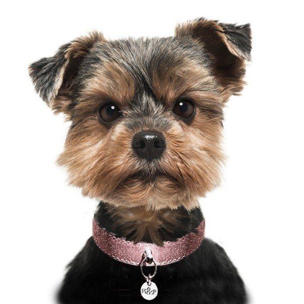 Luxusní třpytivý kožený obojek pro psa