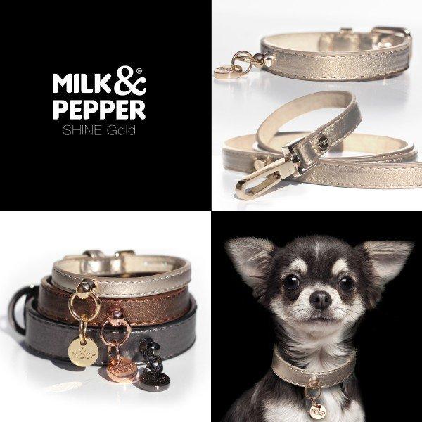 Luxusní kožený obojek Gold pro psa