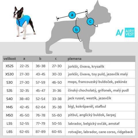 měření psa