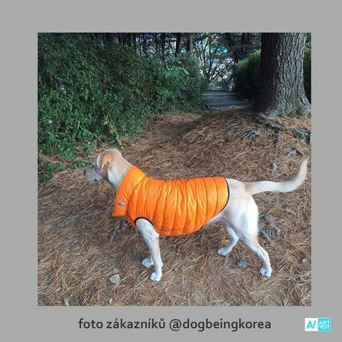 Zateplený obleček pro psa
