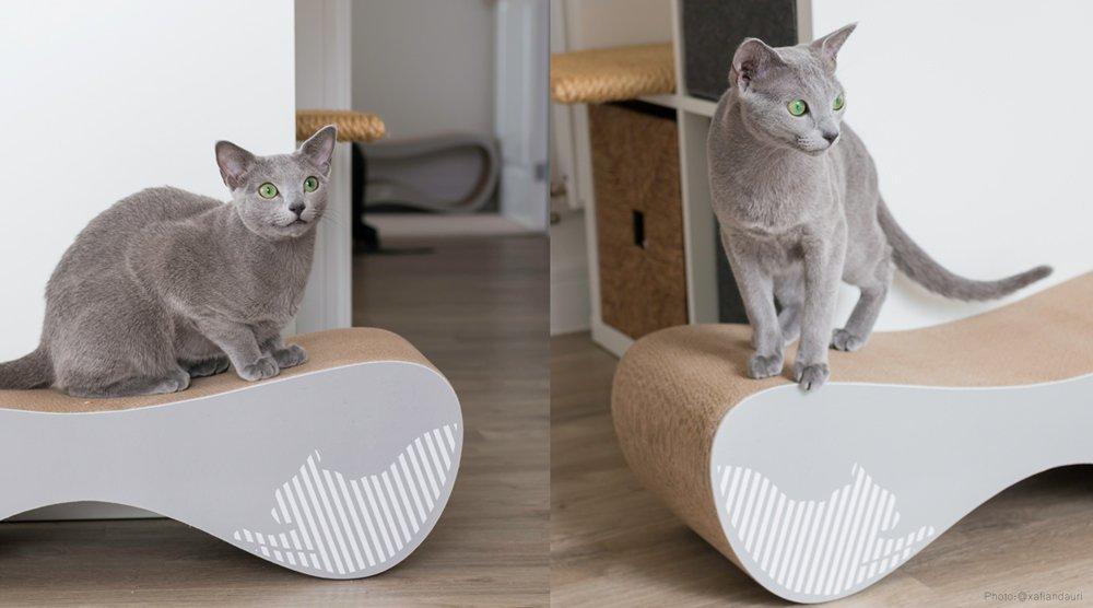 Moderní škrabadla pro kočku