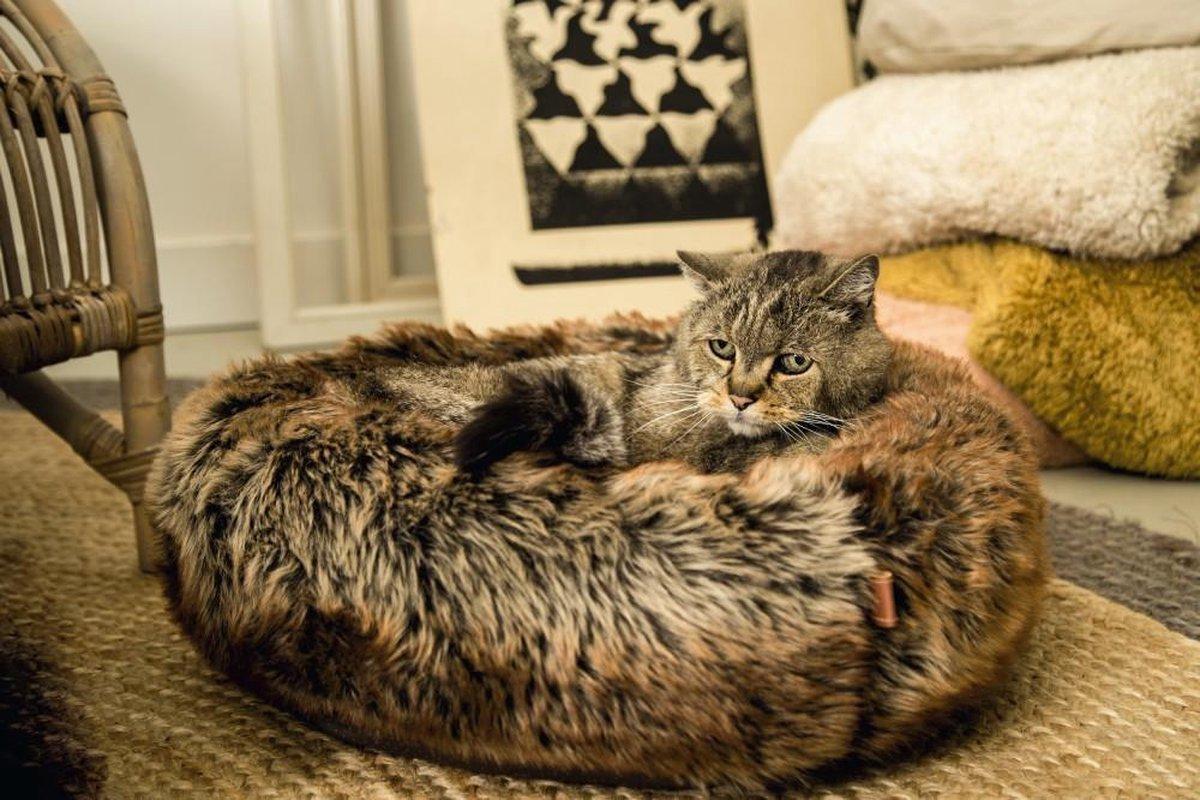 Pelíšek pro kočky a malé psy