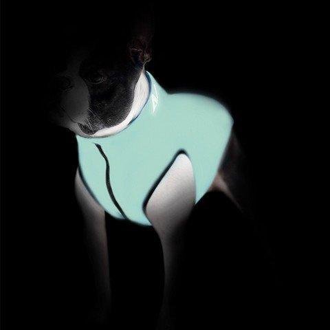 Svítící vesta pro psa