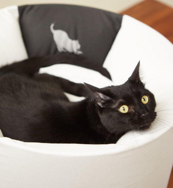 Kočičí pelíšek vysoký