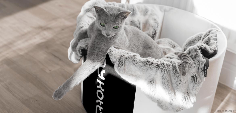 Moderní designový kočičí pelech a deka