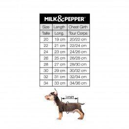 tabulka velikostí, měření psa