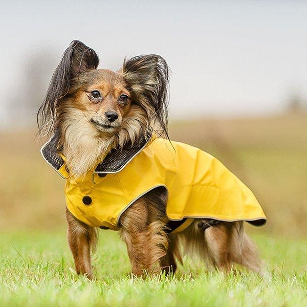RUKKA psí pláštěnka