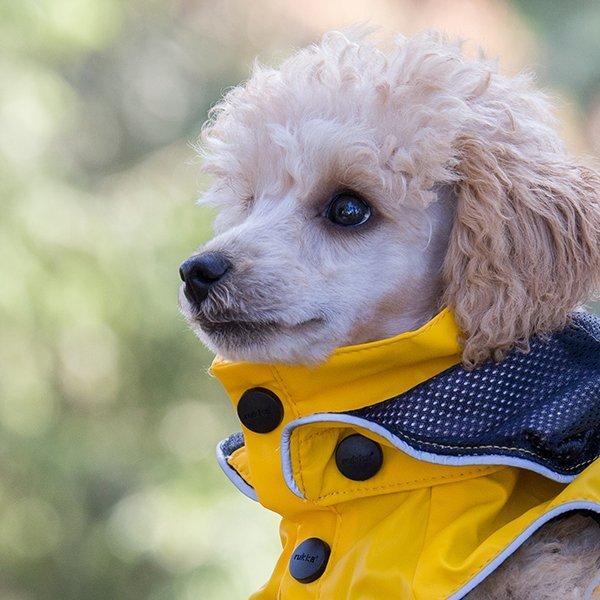 RUKKA pláštěnka pro psa