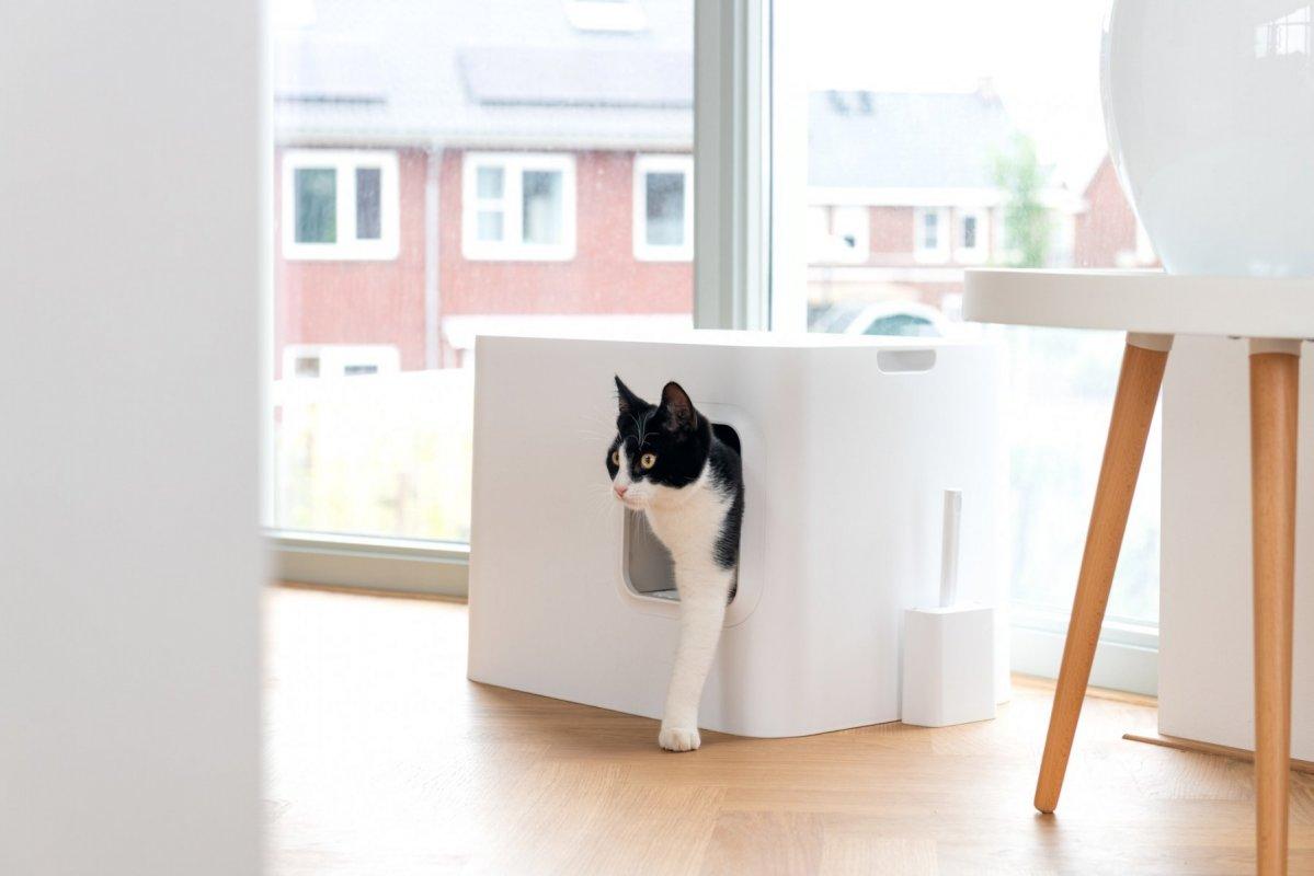 Komoda, stolek, záchod pro kočky v jednom