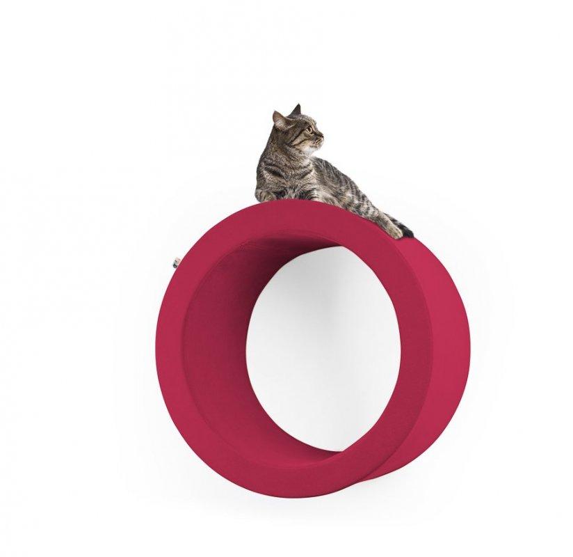 Pelíšek a škrabadlo Emmental - kruh: moderní designový nábytek pro kočku
