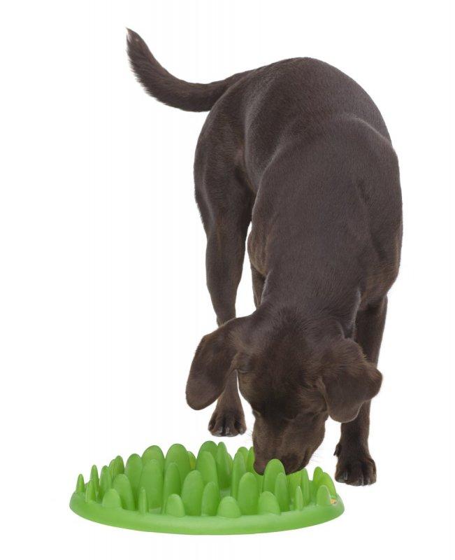 Zpomalovací interaktivní miska pro psy proti hltání a plynnatosti