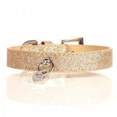 Luxusní třpytivý kožený obojek pro psy - zlatá