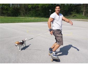 5 sportů, které můžete provozovat s vaším psem