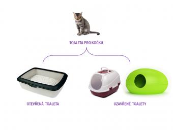 Jak na zápach kočičí toalety: jak vybrat správnou toaletu pro kočku