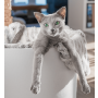 Moderní pelech pro kočku