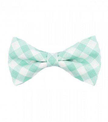 Mint plaid pre-tied bow tie