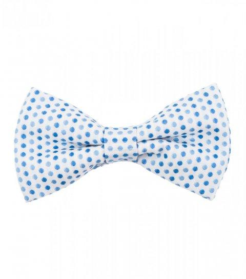 Bílý motýlek s modrými puntíky