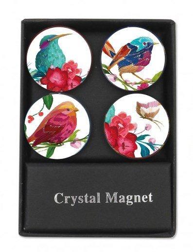 ALBI Magnetky - Ptáčci