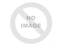 madla FORCE BMX160 gumová, černá, balená