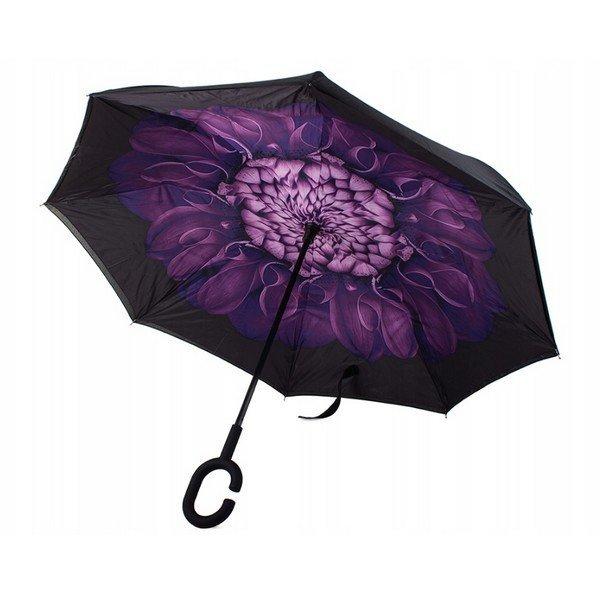 obrateny-dazdnik-fialovy-kvet