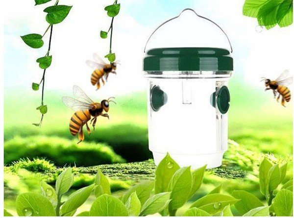 solarny-lapac-hmyzu