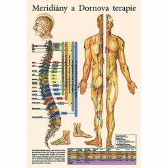 Mapa - Meridiány a dornova terapie