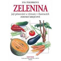 Zelenina, její pěstování a význam