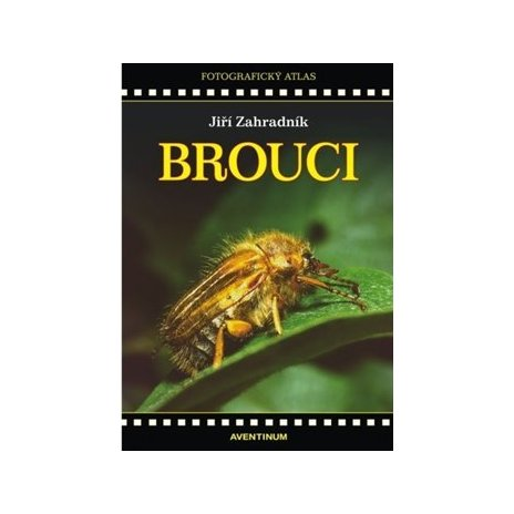 Brouci - fotografický atlas