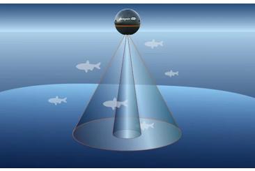 Jak fungují sonary