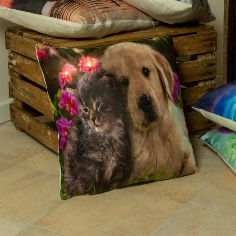 Dekorativní polštář s LED osvětlením Kočka a pes - 38x38 cm