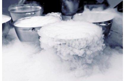 Kolik stojí kapalný dusík? Jaká je cena?