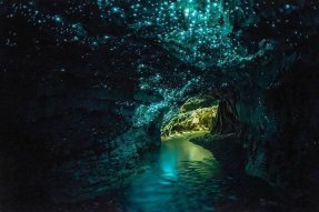Návštěva jeskyní se svítícími červy