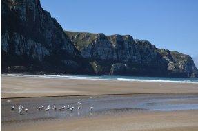 Purakaunui beach s racky