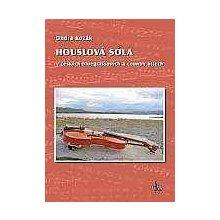 Ondra Kozák: HOUSLOVÁ SÓLA v českých bluegrassových a country hitech