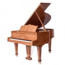 Niendorf model N-RGF2-172 klavírní křídlo sycamore-burl lesk