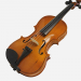 Smyčcové nástroje