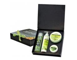 Zestaw naturalnych kosmetyków o zapachu lodowego mochita 850 ml