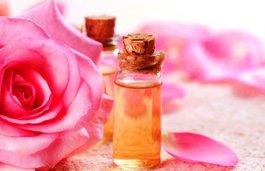 Bulharská damašská růže - dar přírody s nesčetnými výhodami, část I.