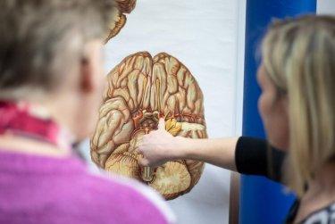 Den zdravého mozku