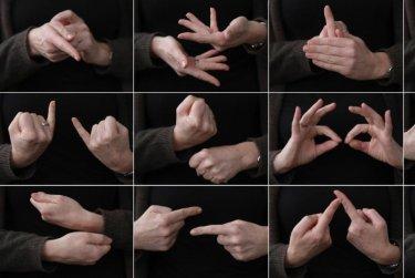 Kurz českého znakového jazyka