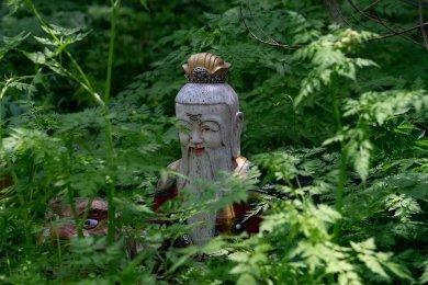Šamanismus, šamanské inspirace