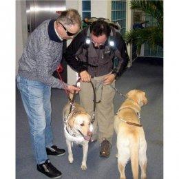 Společenské setkání nevidomých