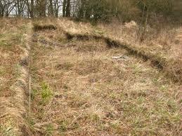 Pravěké pevnosti Karlovarska
